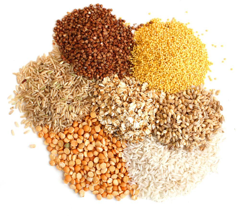 خوراک دام، طیور و آبزیان با کیفیت
